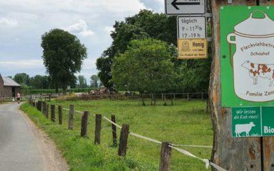 Der Schauhof als Rad-Punkt: Bericht in der WZ